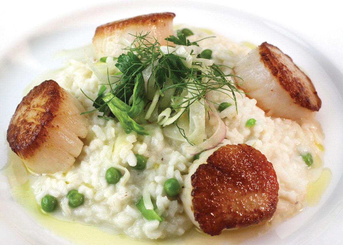 Tasty scallop dish